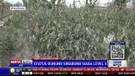 Erupsi Sinabung, 1.483 Hektar Lahan Pertanian Terancam Gagal Panen