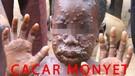 Heboh Cacar Monyet Kemenkes Belum Ditemukan Kasusnya di Indonesia