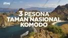 Ramai Tagar Save Komodo, Ini 3 Pesona Taman Nasional Komodo