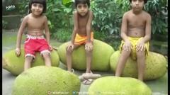 6 Buah dan Sayuran Terbesar Di Dunia