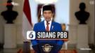 Lengkap, Isi Pidato Presiden Jokowi di Sidang Umum PBB