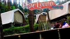 De Loano Glamping dan Kebun Teh Nglinggo | Wisata Purworejo dan Wisata jogjakarta
