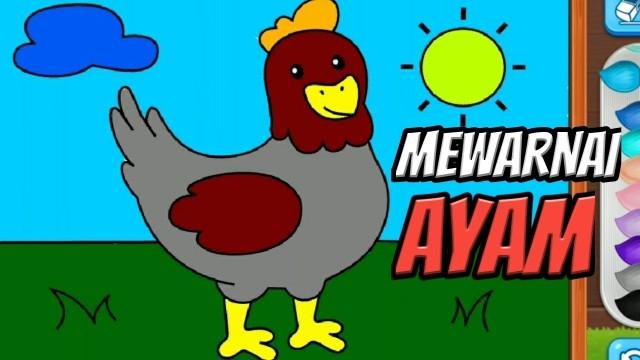 Streaming Belajar Menggambar Dan Mewarnai Untuk Anak Tk Dan Paud Belajar Mewarnai Ayam Vidio
