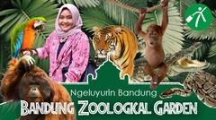 Ngeluyurin Bandung: Jalan-Jalan ke Kebun Binatang