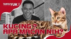 Ricky Fajrin Ternyata Mew Mew Banget | Tanya-Tanya Yuk (Chapter 103)