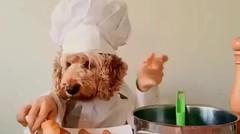 Chef Kecil