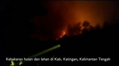 Miris kebakaran hutan  kalimantan