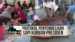 PROTOKOL PENYEMBELIHAN SAPI KURBAN PRESIDEN - CJ Covid-19