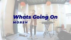 LIVE MUSIC Morsh - Whats Going On