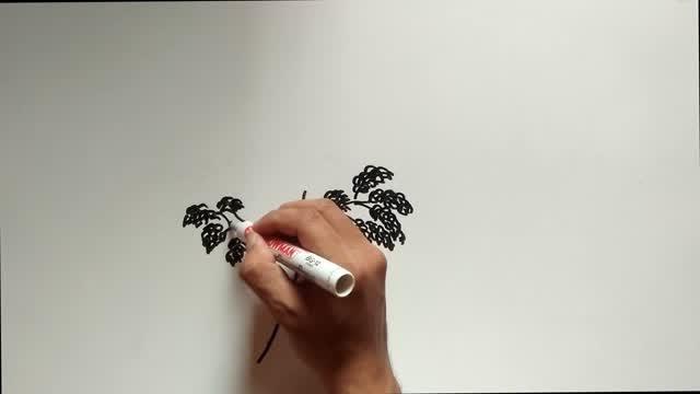 Cara Menggambar Pohon Nangka Dalam Psikotes Vidio Com