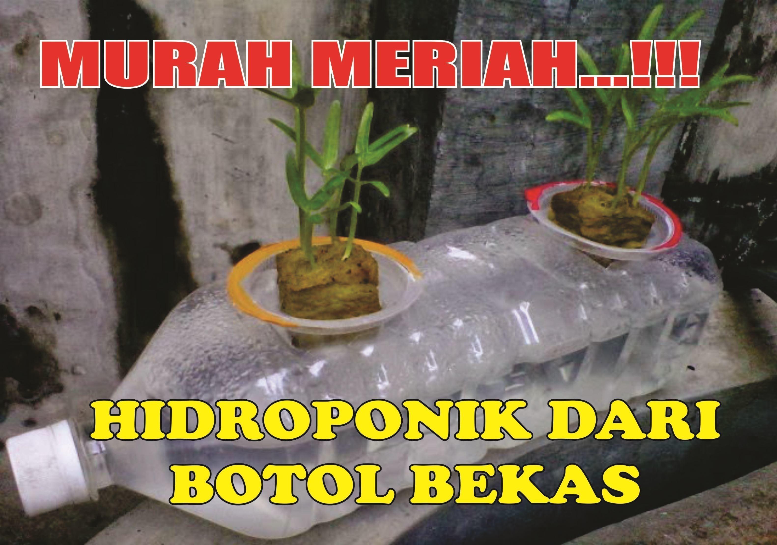 Hidroponik Aquaponik Kratky System Dengan Botol Gelas Air Mineral