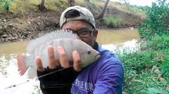Lagi Beruntung !! Mancing Di Sungai Kecil Dapat Ikan Nila dan Patin