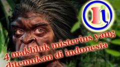 4 Makhluk Misterius yang Ditemukan di Indonesia