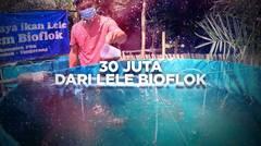 BERANI BERUBAH: 30 Juta dari Lele Bioflok