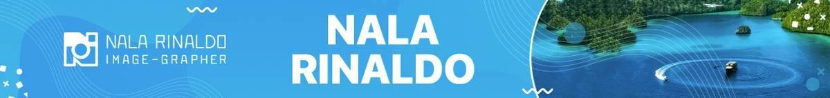 Breaking Banner - Nala Rinaldo