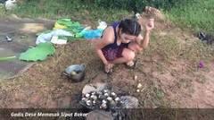 Gadis Desa Memasak Siput Bakar