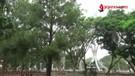 Pemkot Metro Bakal Bangun Saluran Biopori Taman Merdeka