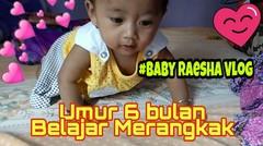 Baby Raesha Umur 6 Bulan mulai Belajar Merangkak