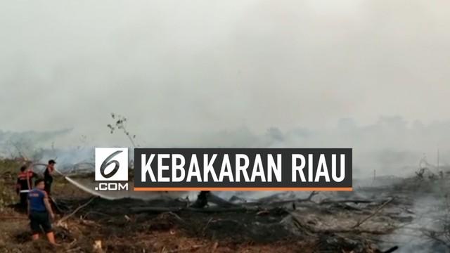 300.000 Orang Sesak Nafas Akibat Kebakaran Hutan Riau