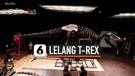 LELANG DISNEY HINGGA T-REX DI ERA COVID-19