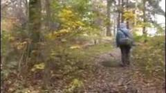 The adventure of my butt in the forest of Sweden