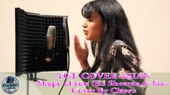 Asian Cover [ Ed Sheeran & Sia - Shape of you ( Cover By Chovo )]