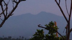 Gunung Rajabasa (1.282 Mdp)