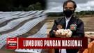 Jokowi Blusukan Lahan Food Estate di Sumatera Utara