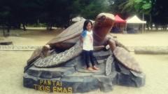 Wisata Pantai Tikus Emas Bangka