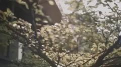 Teaser video clip 'I Love You'