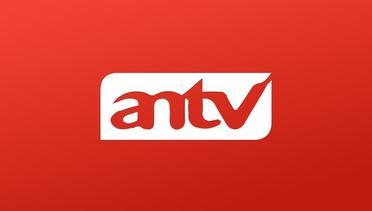 ANTV TV Stream