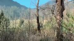 Keindahan Gunung Arjuno-Welirang di Jawa Timur