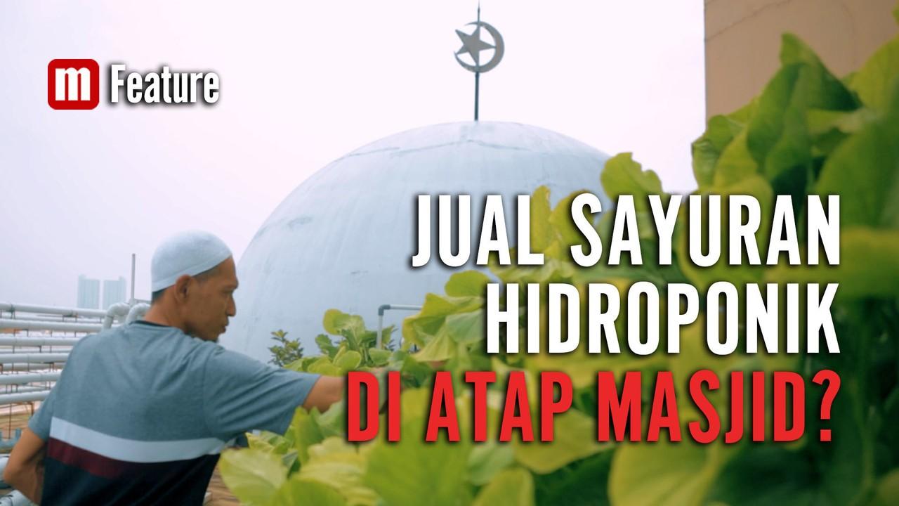 Sayuran Hidroponik dari Atap Masjid