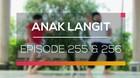 Anak Langit - Episode 255 dan 256