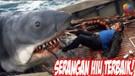SERANGAN HIU TERBAIK !! 7 FILM TENTANG SERANGAN HIU