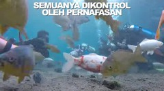 BELAJAR KICKING #DOES (eps 454)