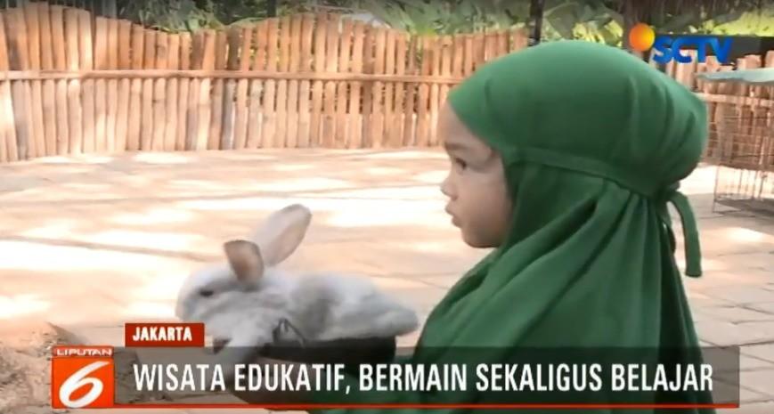 Wisata Edukatif Berwisata Ke Fauna Land Di Ancol Liputan6 Pagi