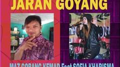 Aksi Kocak Mbak dan  Adik duet JARAN GOYANG  Dangdut hits