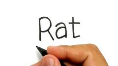 WOW KEREN, belajar cara menggambar kata RAT menjadi tikus dengan mudah