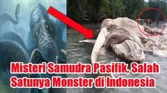 Misteri Samudra Pasifik, Salah Satunya Monster di Indonesia