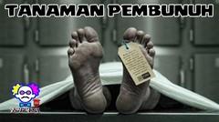 AWAS BERBAHAYA!!! 5 Tanaman Pembunuh Khas Indonesia