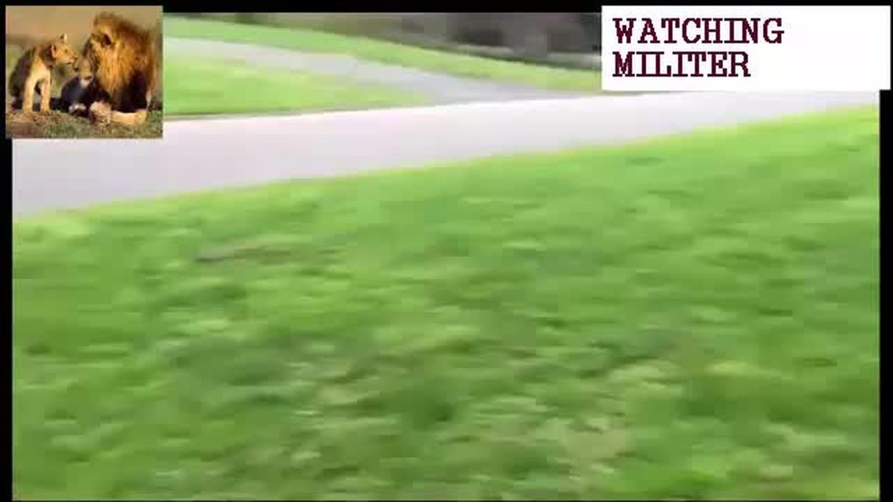 Streaming gak lucu tapi ada sarunya 3 - Vidio.com