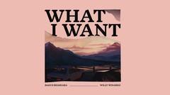 BEATS AND BYTES – What I Want by Bagus Bhaskara & Willy Winarko, visual by Darda Fahlawi