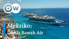 DW Going Green - Meksiko: Dunia Bawah Air