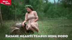 Kalung Emas - Nella Kharisma (COVER) + Lirik