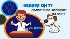 Kenapa Sih Anjing Suka Menggigit Tulang?