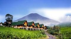 Gunung Dempo (3.159 Mdpl)