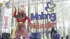 Hutan Pinus Semeru di Kabupaten Malang Ini Jadi Hutan Terindah di Indonesia