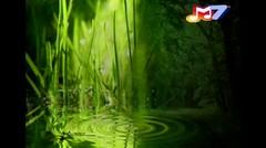 Noah | Nike Ardila - Tinggalah Ku Sendiri (Cover Bofit)