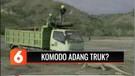 Viral Seekor Komodo Adang Truk Proyek di Pulau Rinca, Benarkah? | Liputan 6